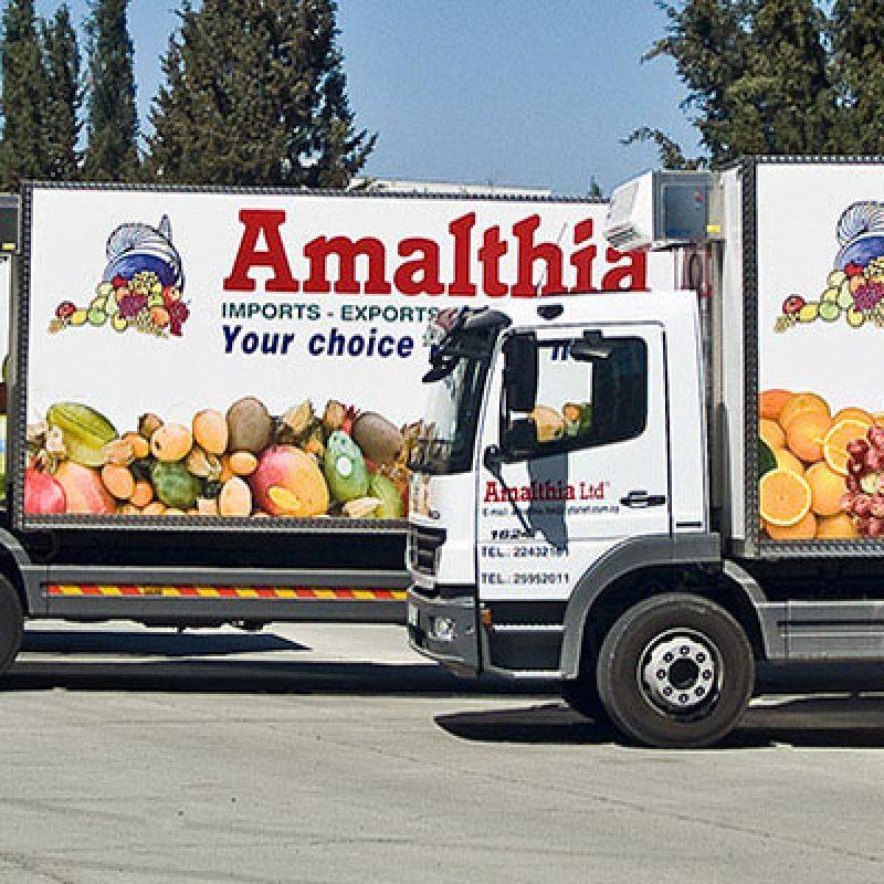 نکات نگهداری کامیون های یخچال دار و ماشین های حمل مواد غذایی