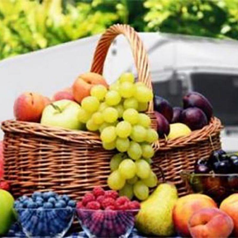 سردخانه میوه - نکات مهم در یخچال های حمل میوه